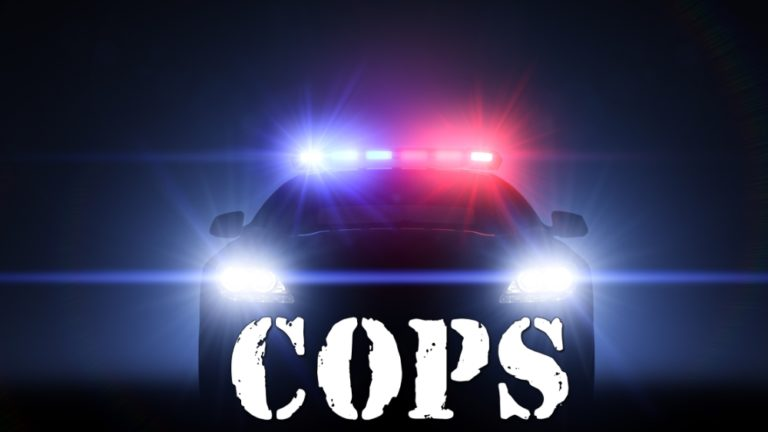 'Cops' TV Show  Officially Cancelled at Paramount Network