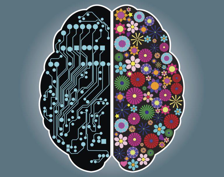 The Left vs Right Brain Myth