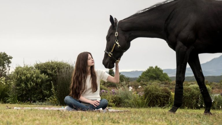 Disney's Black Beauty Review: Humanity Through The Eyes Of a Mustang Horse