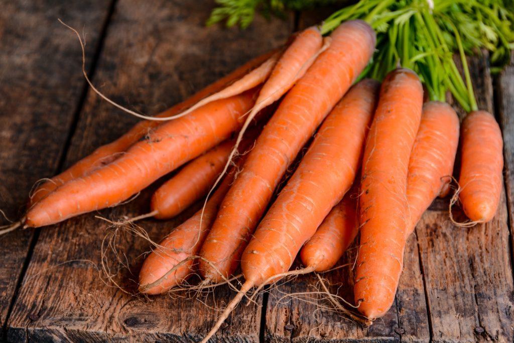 carrots table popidar ss