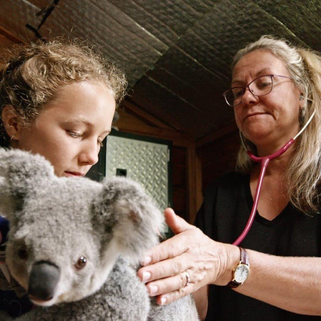 Izzy's Koala World S2