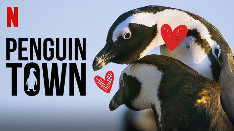 Penguin Town Season 1 Review: A Documentary Like Never Before