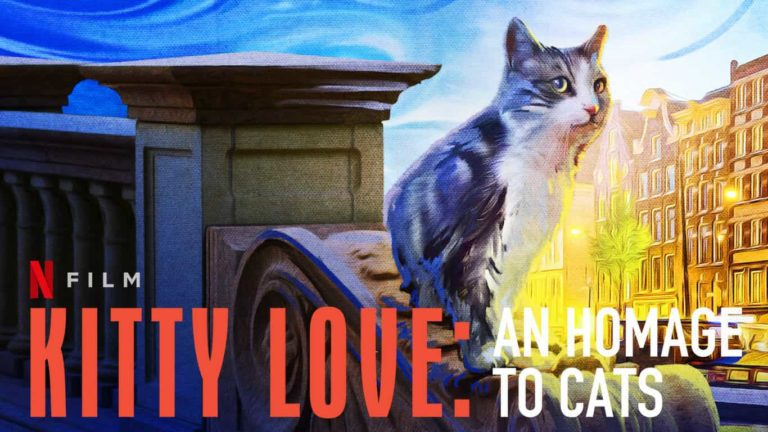 Netflix's Kitty Love: An Homage to Cats Review: Cute, Cuddly and Lots of Mischiefs!