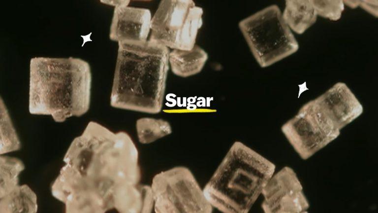 Netflix's Explained Season 3 Episode 1 Recap: Bitter Reality of Sugar!