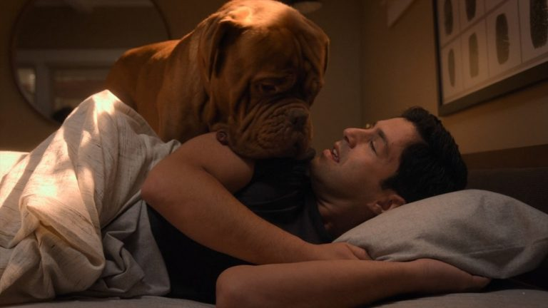 Turner and Hooch Episode 1 Recap: Forever and a Dog