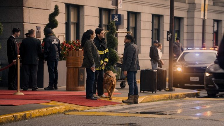Turner and Hooch Episode 2 Recap: A Good Day to Dog Hard