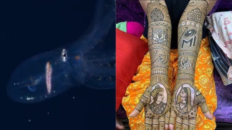 Glass Octopus Video Goes Viral; Mumbai Indians and Manchester United Logos on Bride's Mehendi