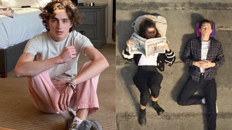 Dune Star Timotheé Chalamet Saw Spider-Man: No Way Home Trailer Frame By Frame, Here's Why