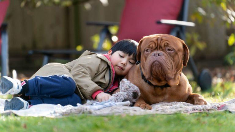 Turner and Hooch Episode 9 Recap: Witness Pup-tection